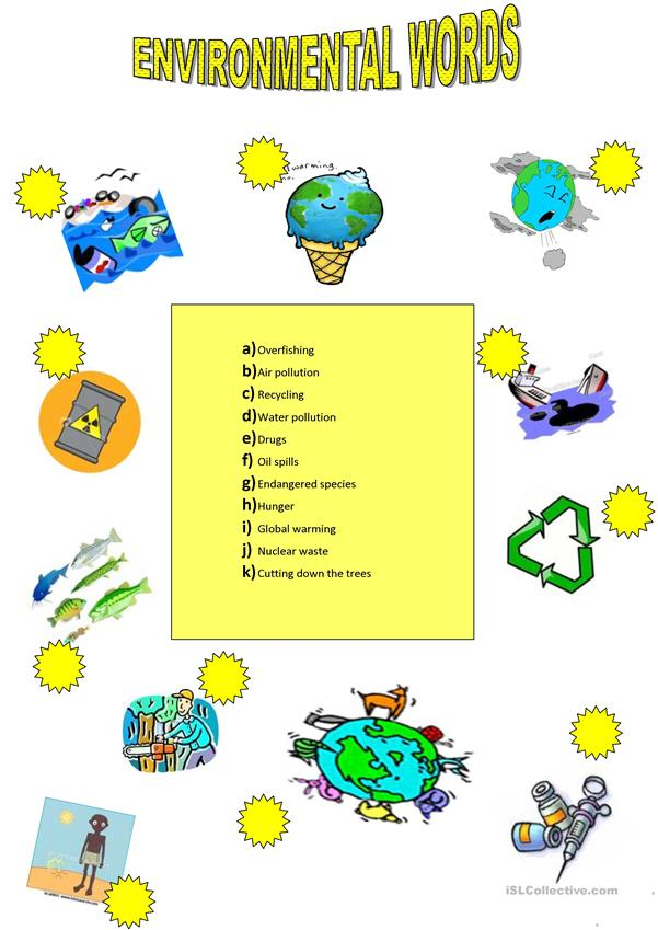 Environment Vocabulary