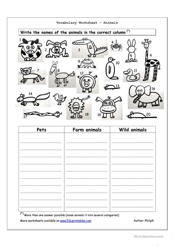 Vocabulary Worksheet - Animals