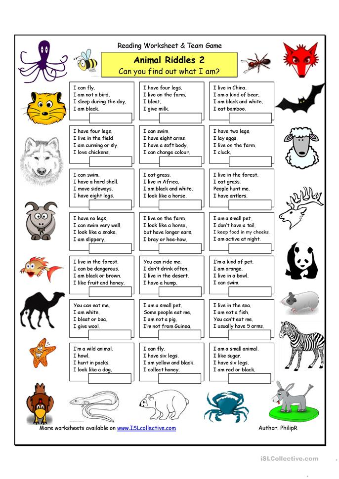Animal Riddles Worksheet submited images.