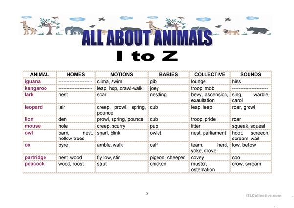 All about animals I to Z