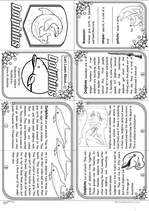 Let's Learn About Dolphins - Elementary Level [ Minibook ]