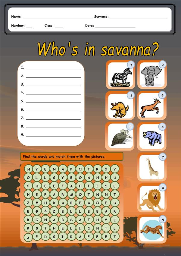 Who's in savanna?