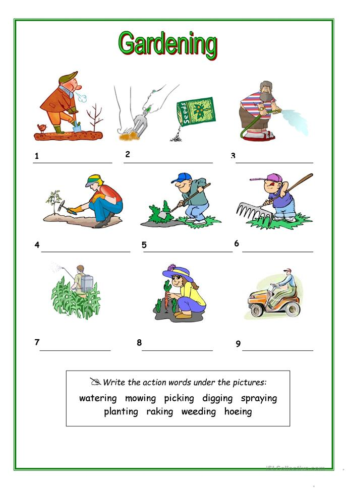 Gardening Worksheets Free Worksheets Library : Download ...