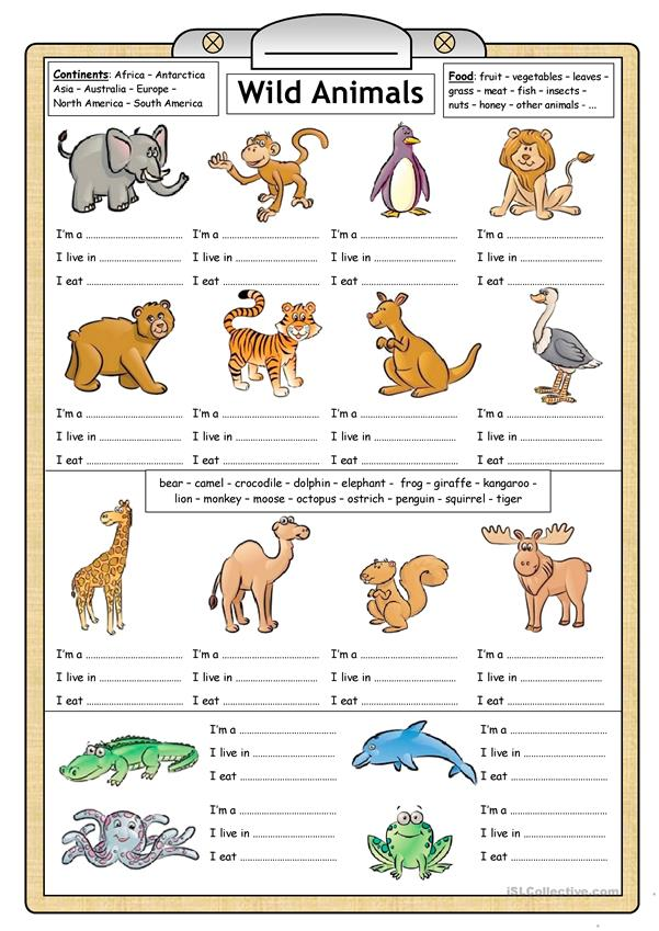 Wild Animals - Reading & Writing worksheet