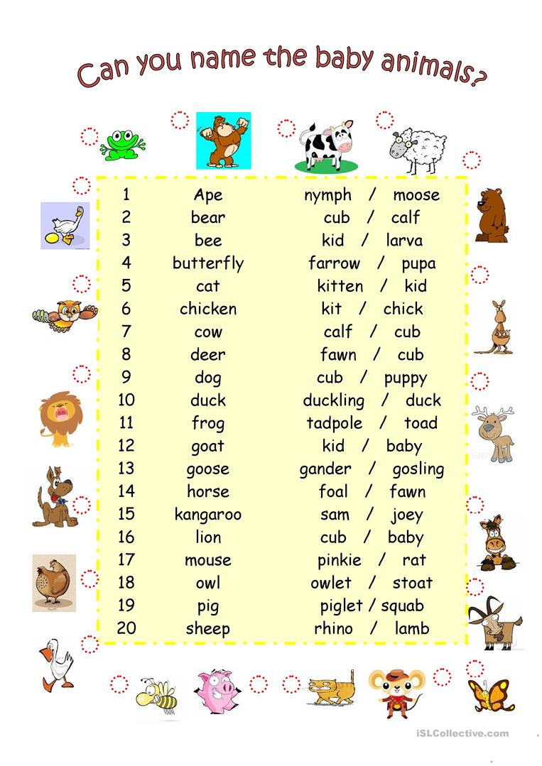 9 Free Esl Baby Animals Worksheets