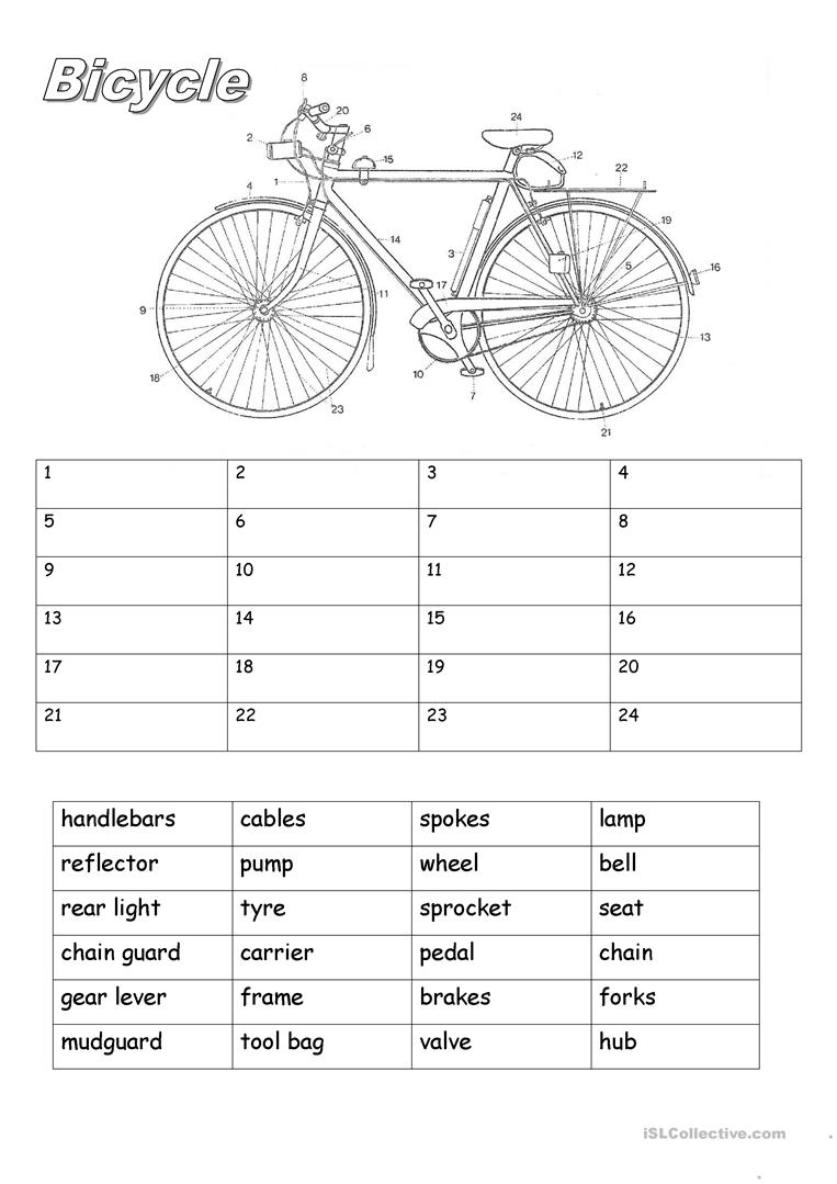 Worksheets Parts Of A Circle Worksheet bicycle parts worksheet free esl printable worksheets made by teachers full screen