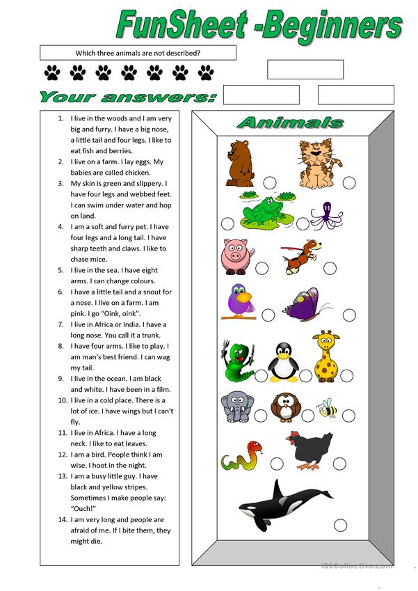FunSheet for Beginners: Animals