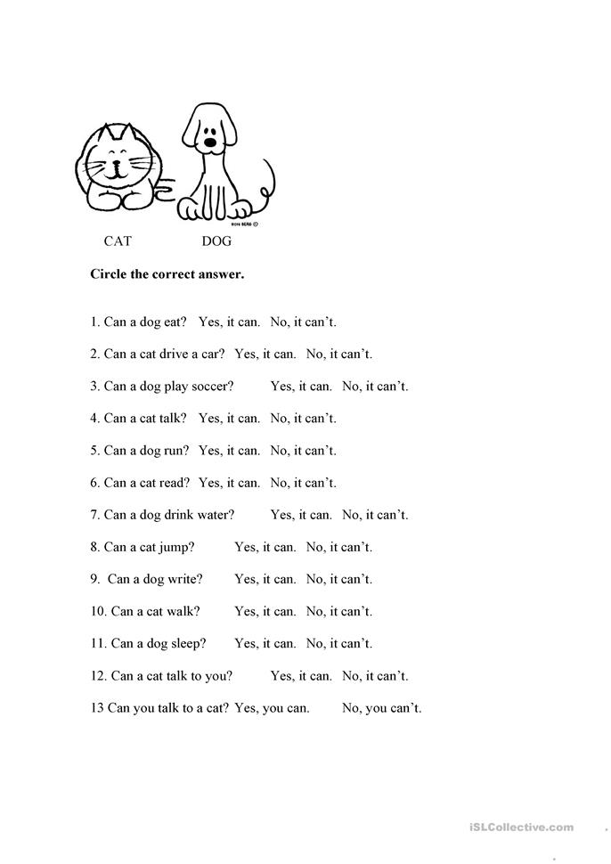 Can/Can't Cat and Dog - ESL worksheets