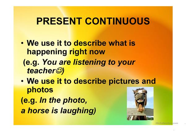 present continuous-crazy animals