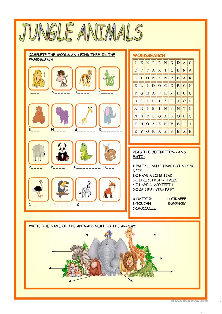 17 Free Esl Jungle Animals Worksheets