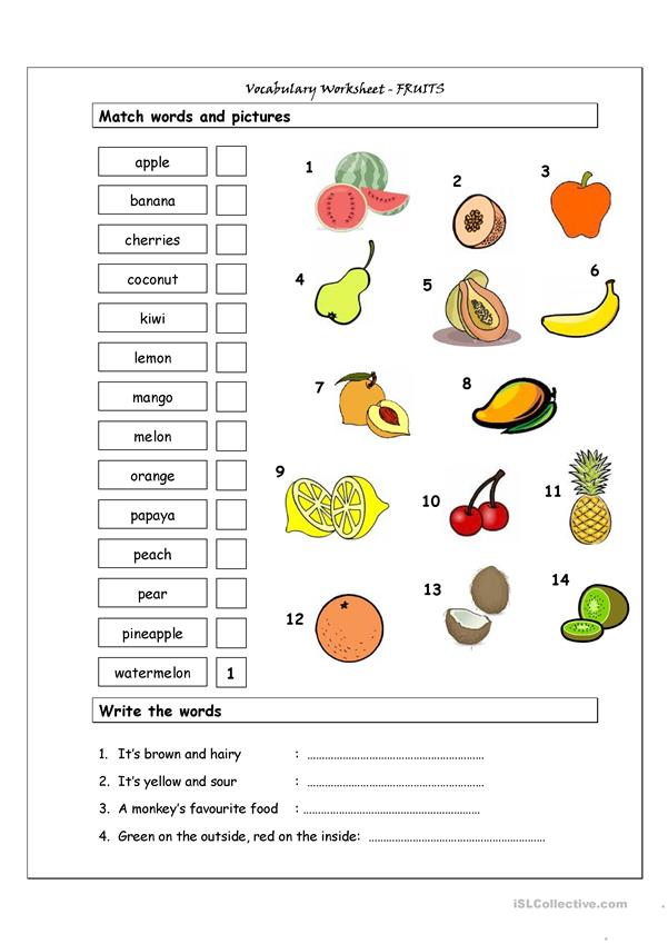 Vocabulary Matching Worksheet - Fruit