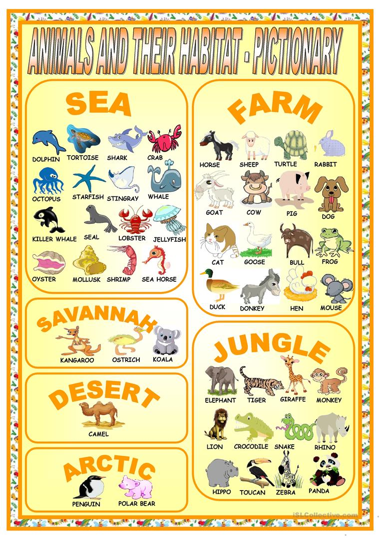 animals and their habitat pictionary worksheet free esl printable worksheets made by teachers. Black Bedroom Furniture Sets. Home Design Ideas
