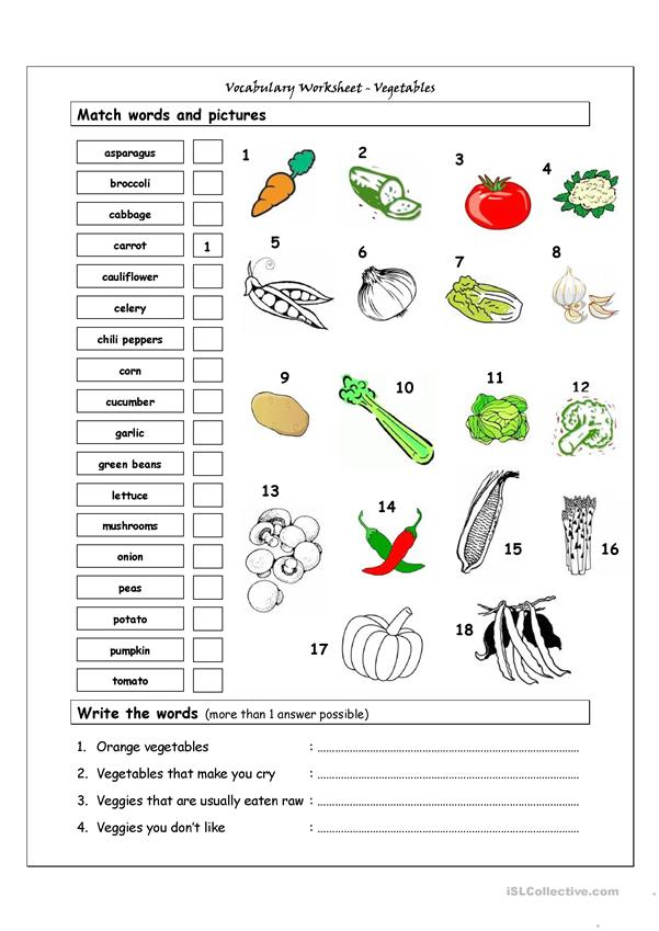 Vocabulary Matching Worksheet - VEGETABLES