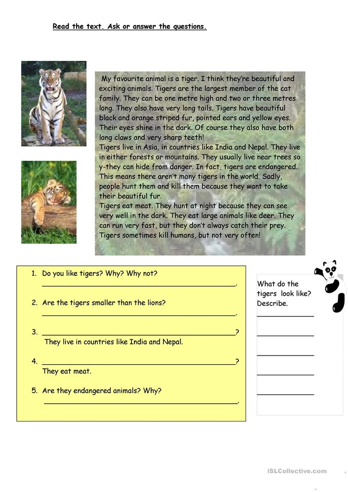 19 FREE ESL tiger worksheets
