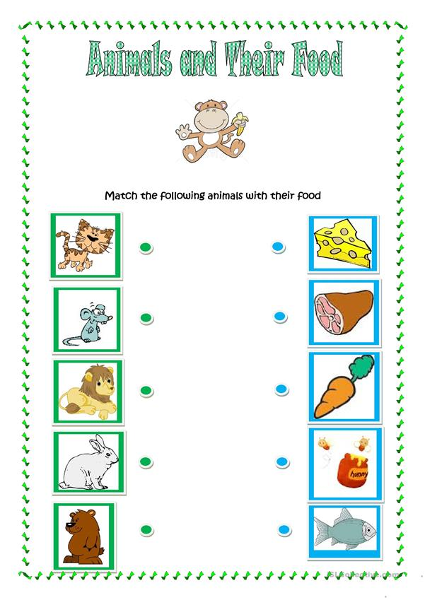Animals and Their Food - English ESL Worksheets