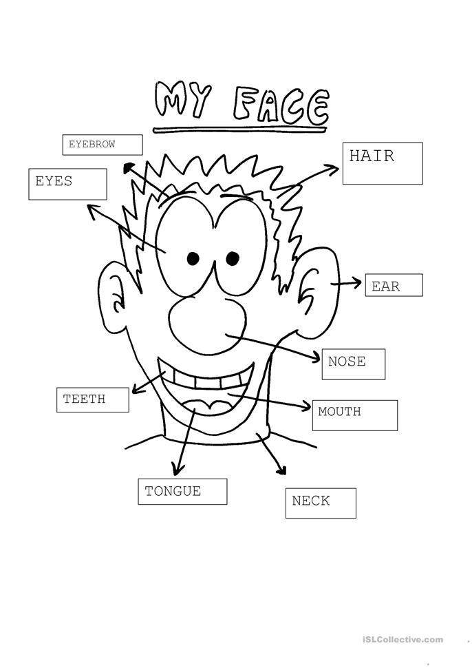 My face - ESL worksheets