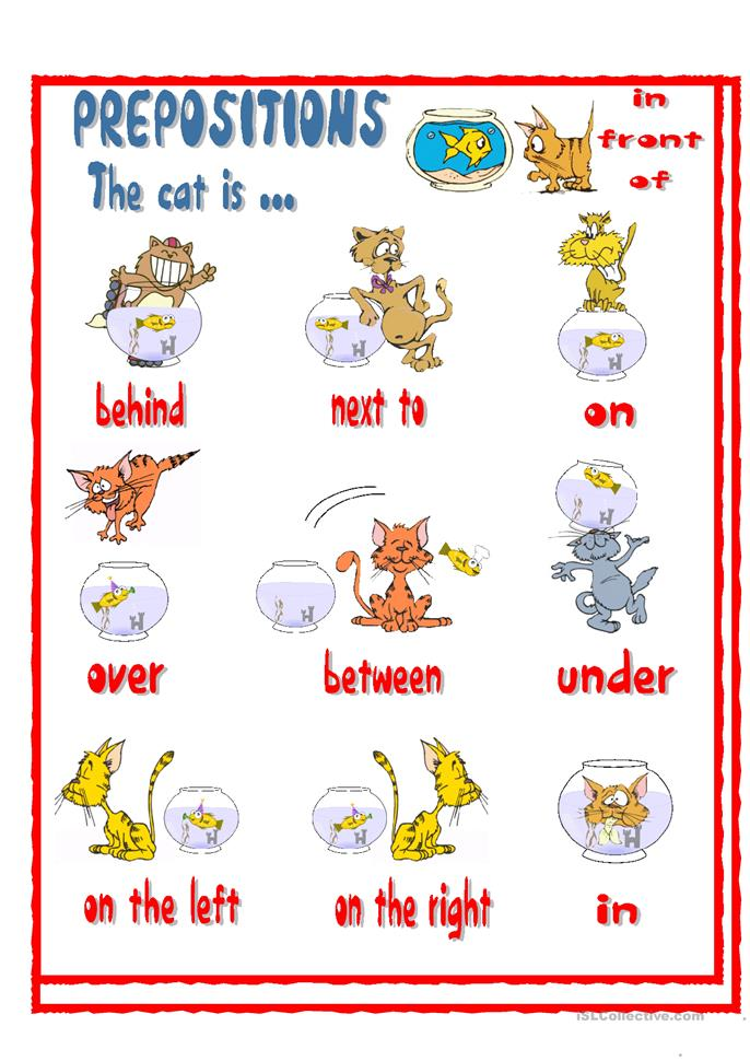 PREPOSITIONS- The cat is ... - ESL worksheets