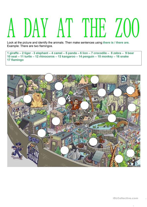 Animals - A day at the zoo