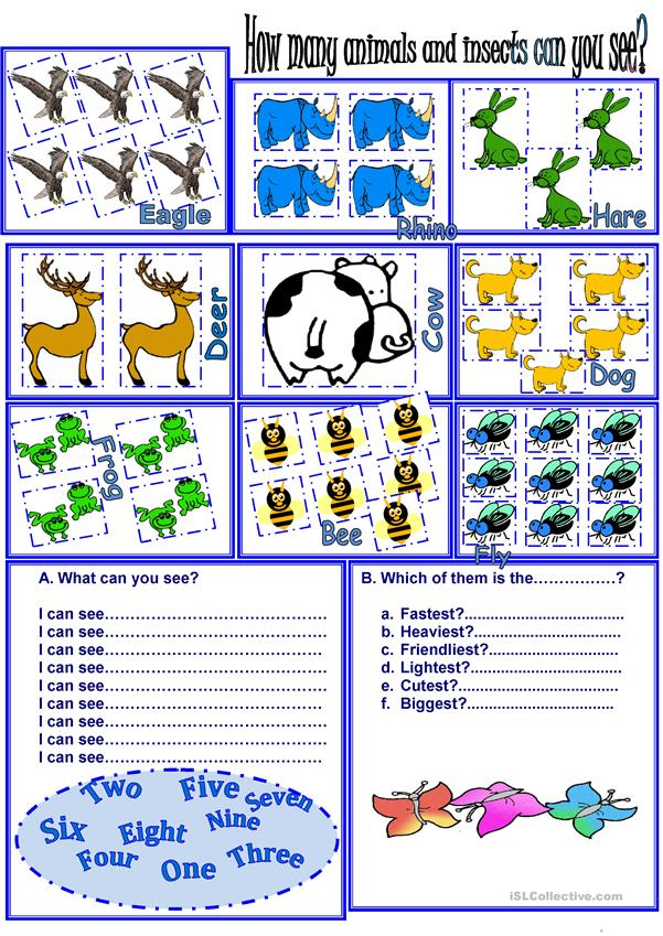 animals+numbers+adjectives+memory game