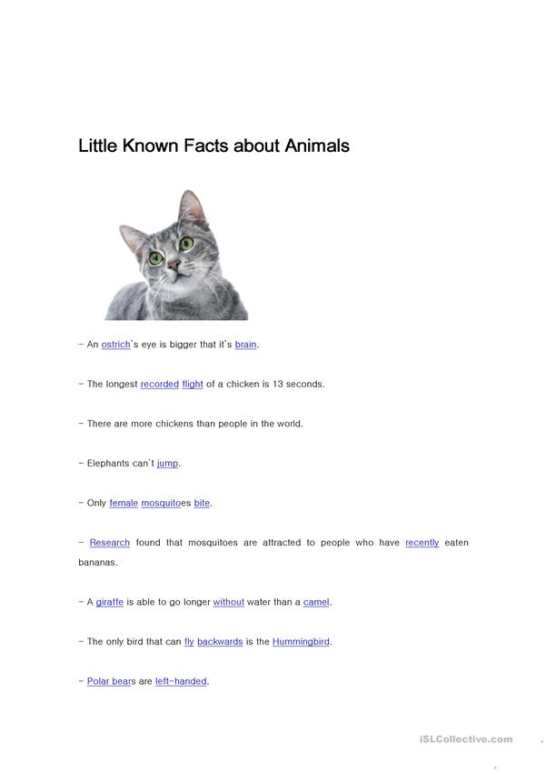 Little known facts about animals