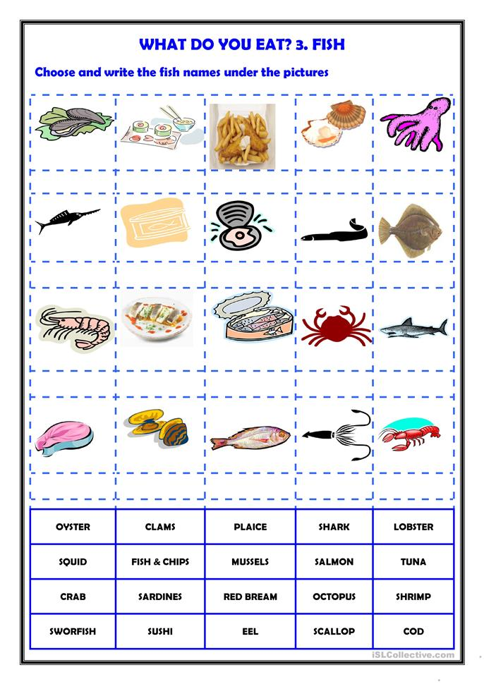 What do you eat 3 fish worksheet free esl printable for What do fish eat
