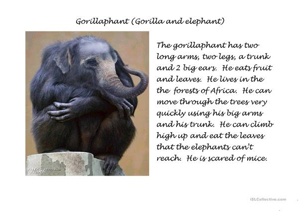The Gorrillaphant