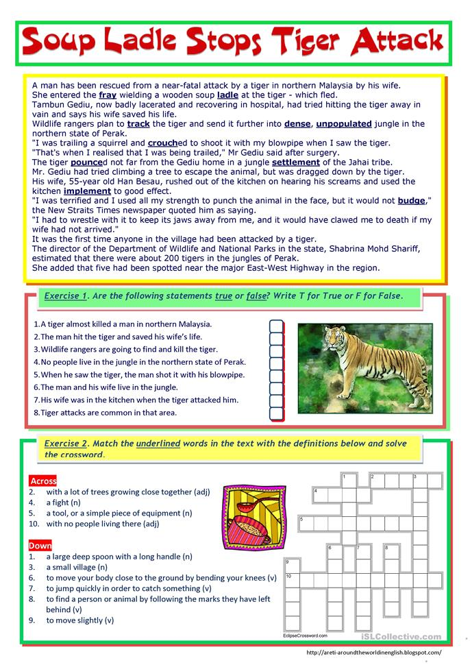 Soup Ladle Stops Tiger Attack (reading + passive voice) - ESL worksheets