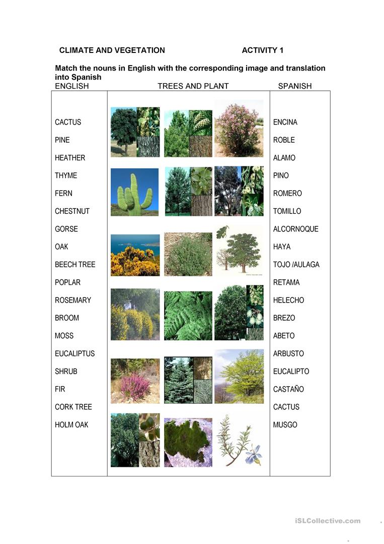 Spanish Climate And Vegetation English Esl Worksheets