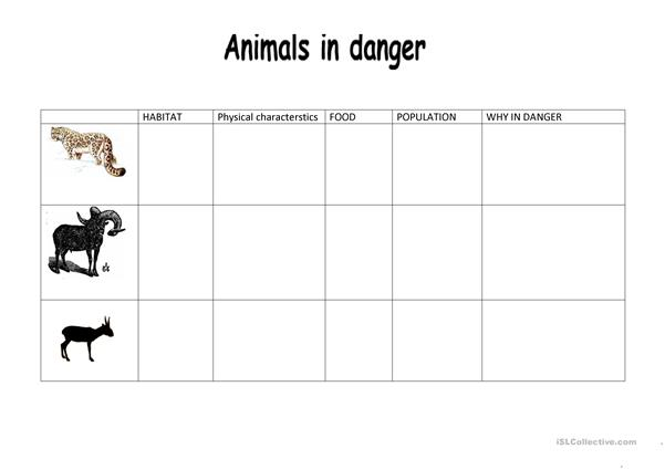 animals iin danger