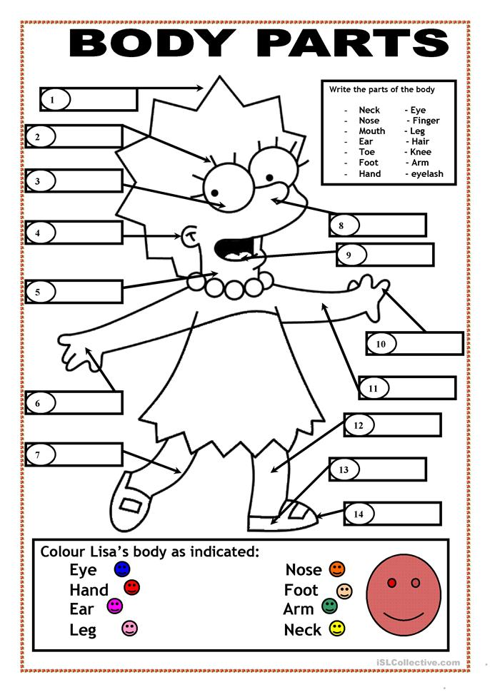 body parts worksheet free esl printable worksheets made by teachers. Black Bedroom Furniture Sets. Home Design Ideas