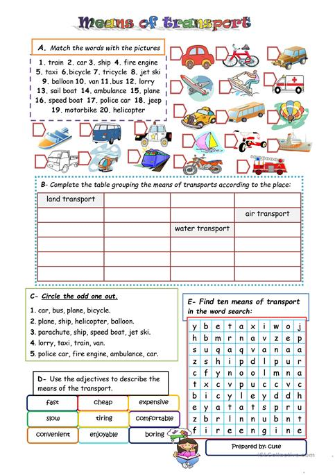 Active transport worksheets by KatieBall - Teaching Resources - Tes