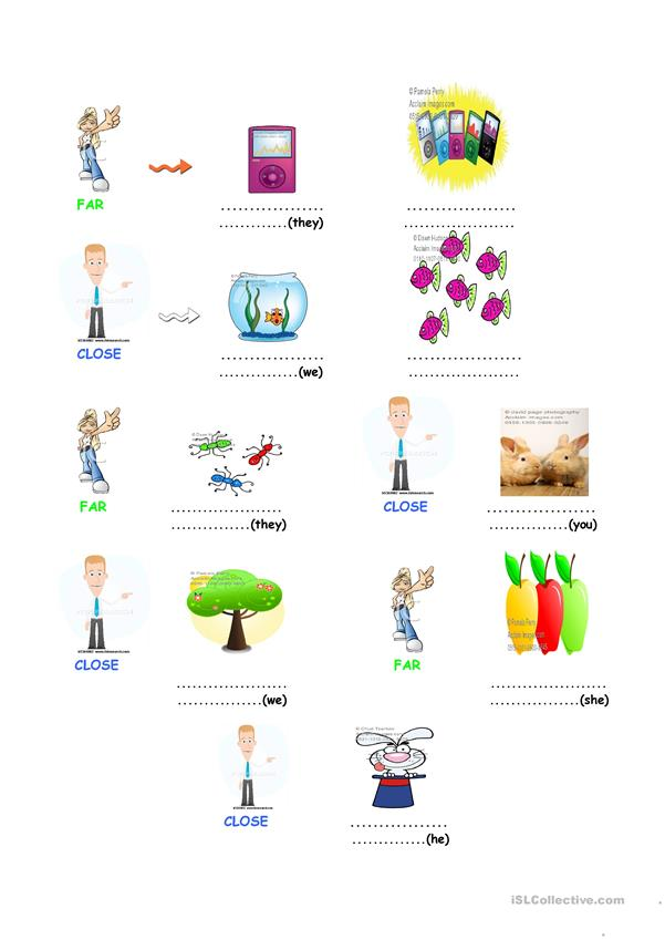 Possessive pronouns and demonstratives