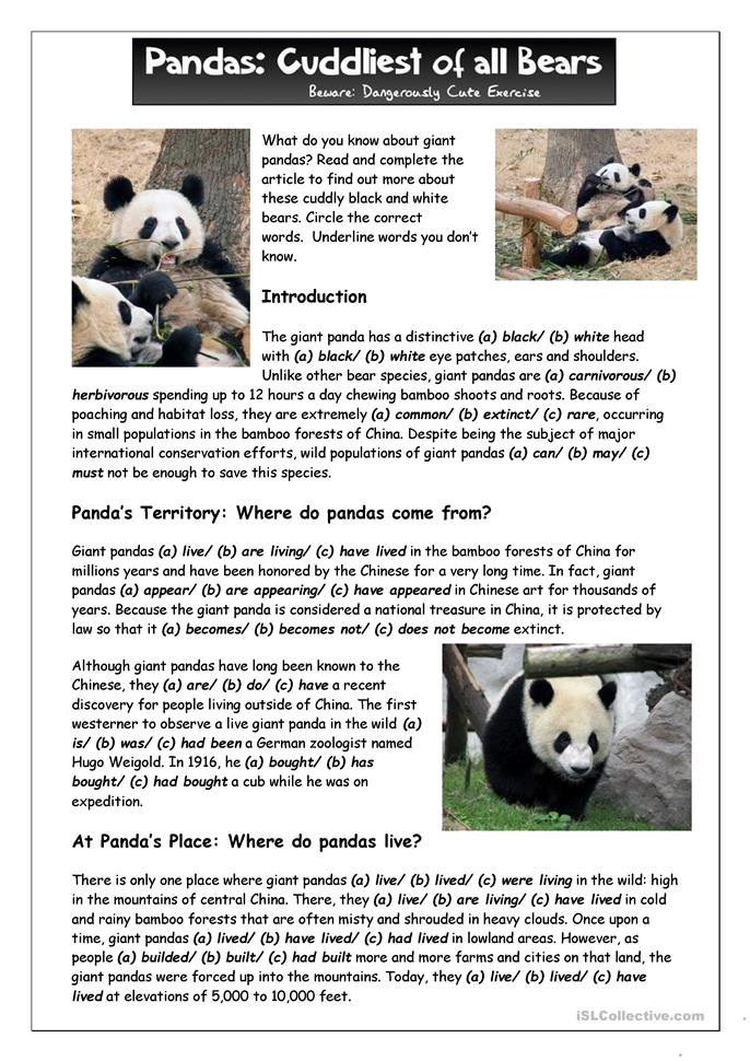 Reading (1) - What Do You Know About Giant Pandas - ESL worksheets