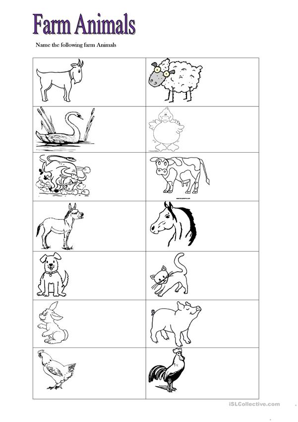 farm animals worksheet free esl printable worksheets. Black Bedroom Furniture Sets. Home Design Ideas