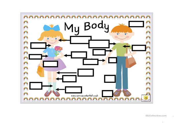 Parts of the body_worksheet