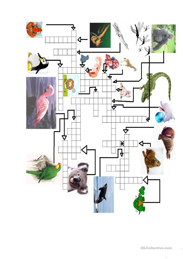 Animal crossword