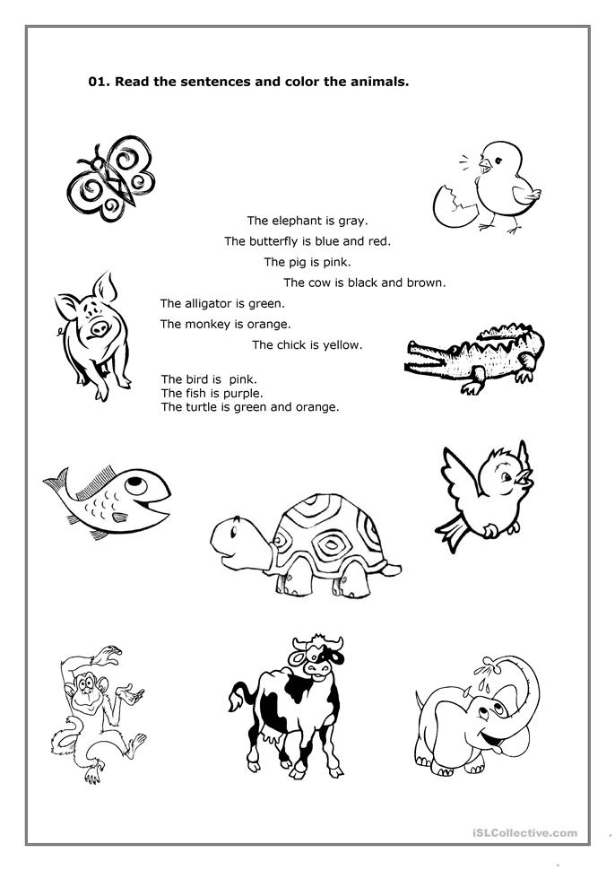 Animals and Colours - ESL worksheets