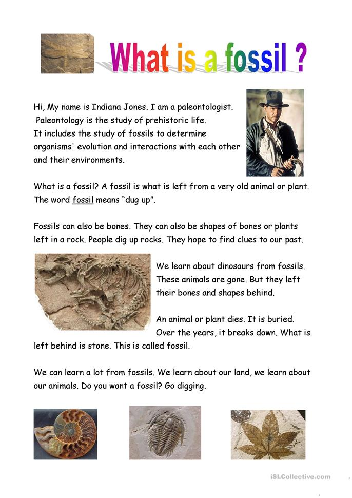 What is a fossil? - ESL worksheets