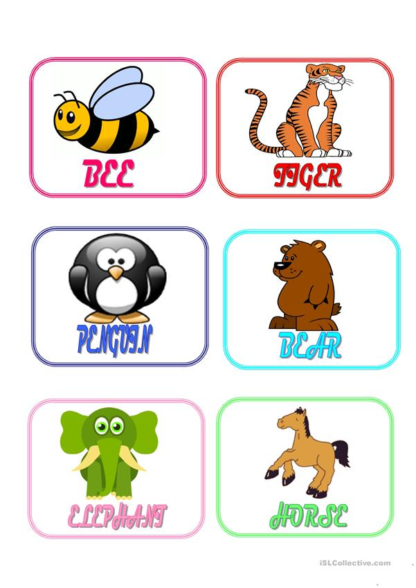 Animals flash cards