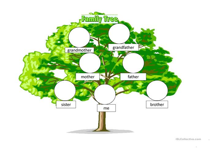 Pics Photos - Family Tree Worksheet
