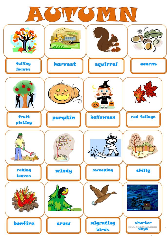 AUTUMN PICTIONARY - ESL worksheets