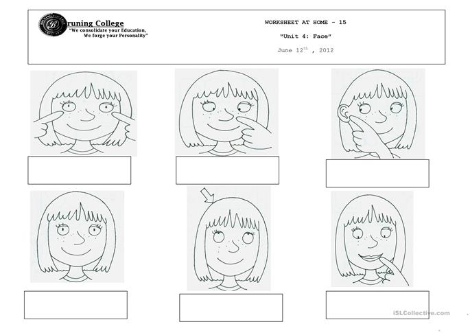 Parts of the face - ESL worksheets