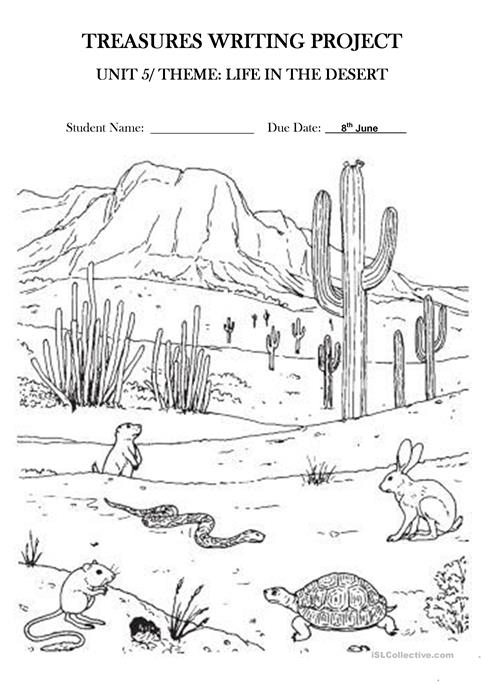Life In The Desert Treasures Writing Project Unit 5 Worksheet