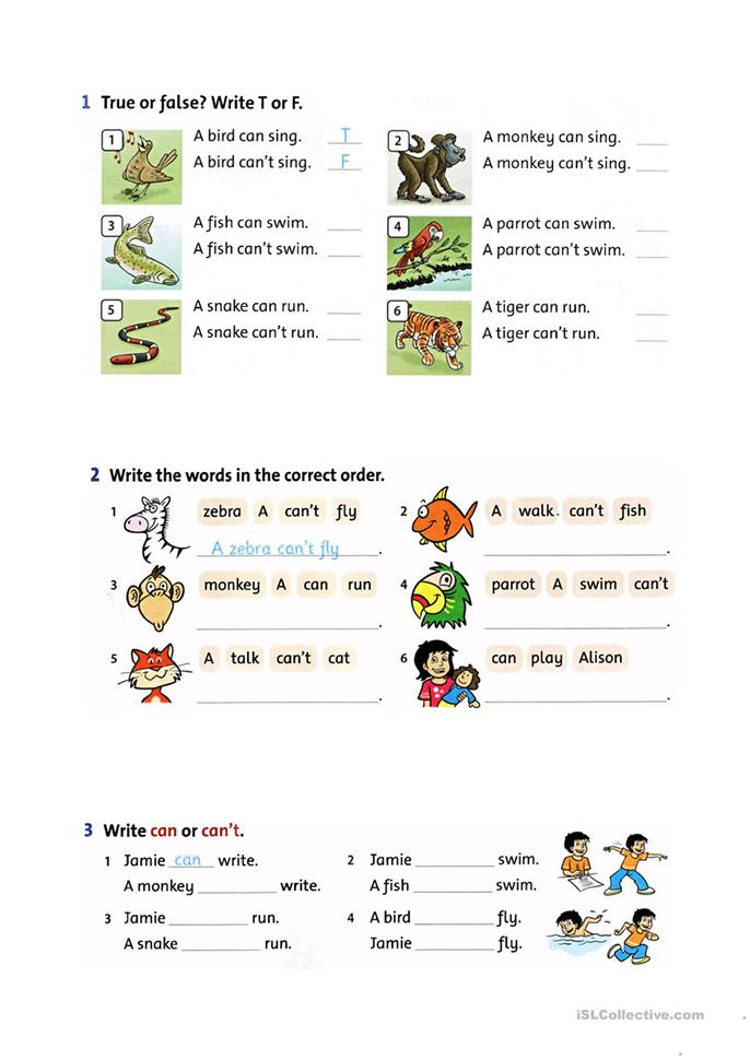 abilities can can 39 t worksheet free esl printable worksheets made by teachers. Black Bedroom Furniture Sets. Home Design Ideas