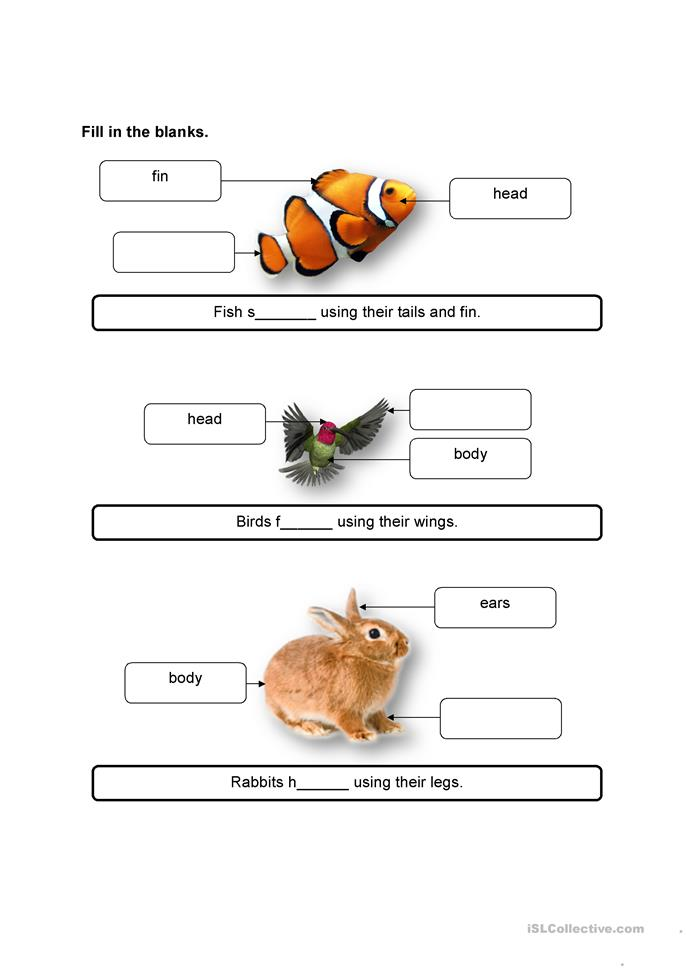 animals and their movement worksheet free esl printable worksheets made by teachers. Black Bedroom Furniture Sets. Home Design Ideas