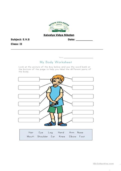 Parts Of Our Body Worksheet Free Esl Printable Worksheets Made By