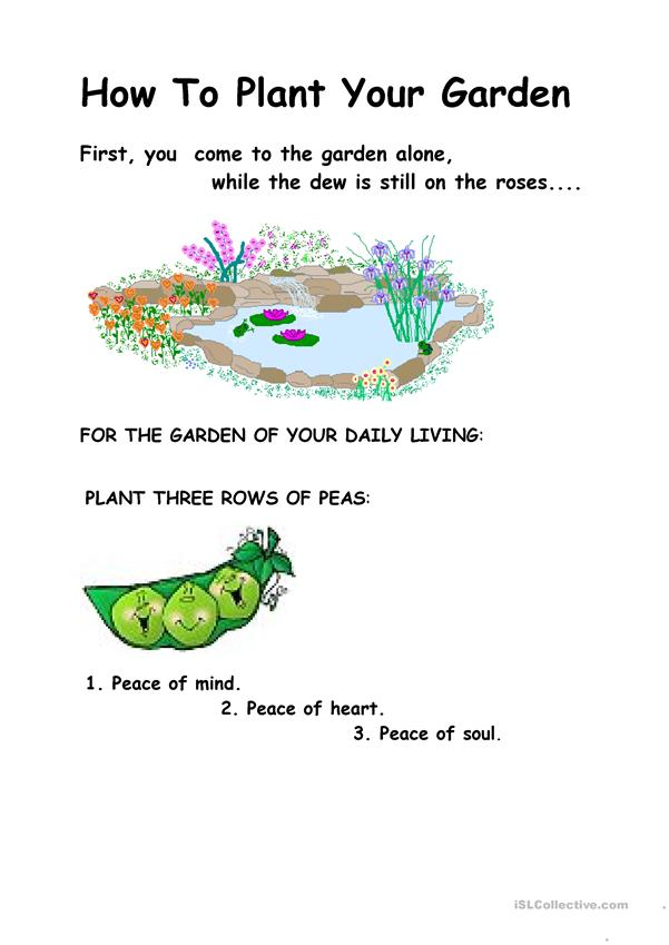 How to plant your garden