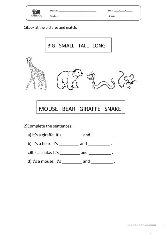 Animals matching + adjectives. - ESL worksheets