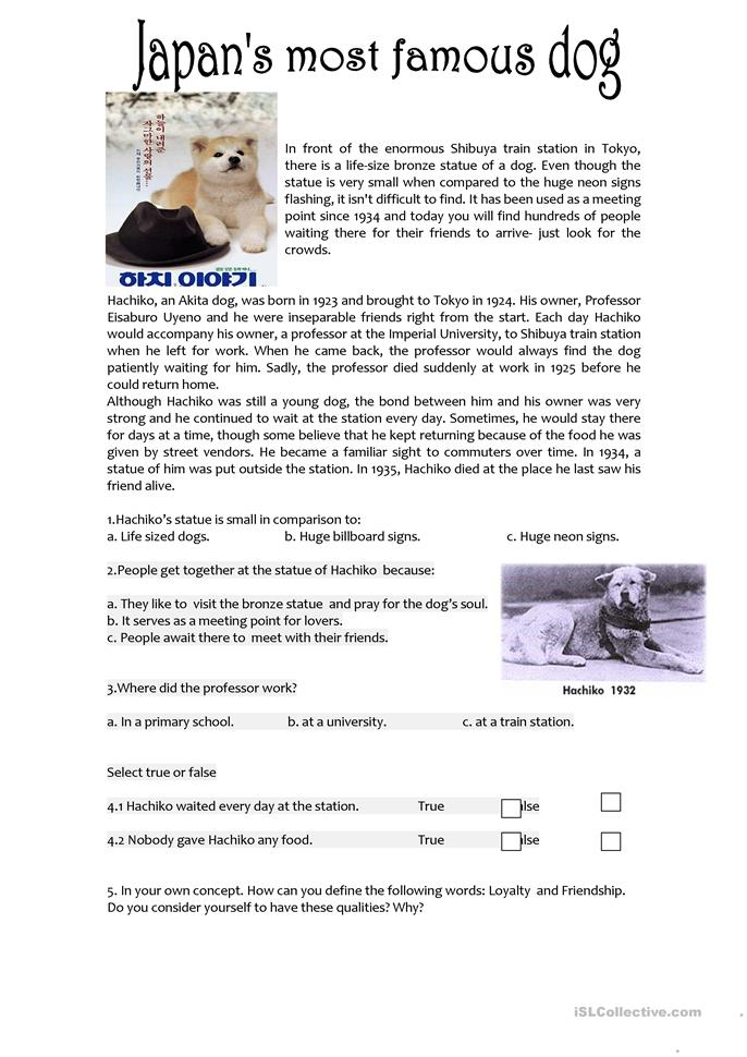 Worksheets Esl Reading Comprehension Worksheets 499 free esl reading comprehension worksheets hachiko comprehension