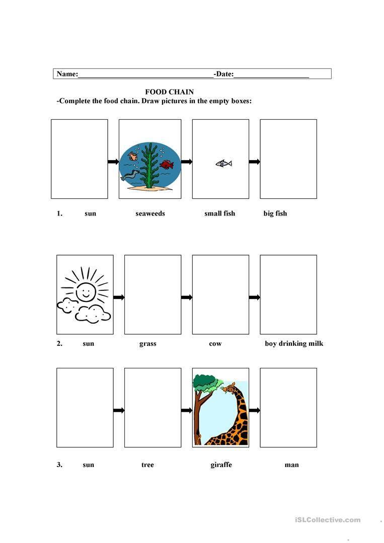 photo regarding Food Chain Printable Activities identify Food items Chain - English ESL Worksheets